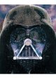 2015 Star Wars Visions Exclusive Darth Vader Poster C-8.5/9